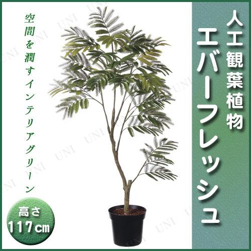 【取寄品】 人工観葉植物 エバーフレッシュポット 117cm