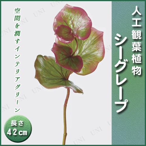【取寄品】 人工観葉植物 シーグレープ 42cm