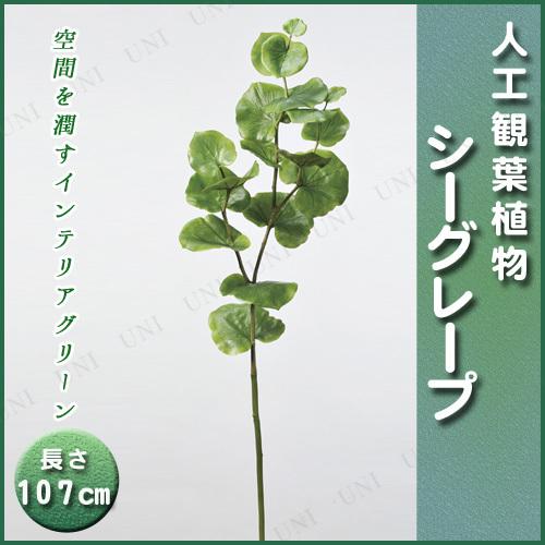 【取寄品】 人工観葉植物 シーグレープ 107cm