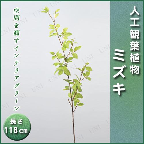 【取寄品】 人工観葉植物 ミズキ 118cm