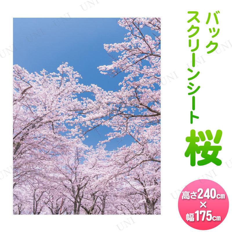 240×175cm バックスクリーンシート桜
