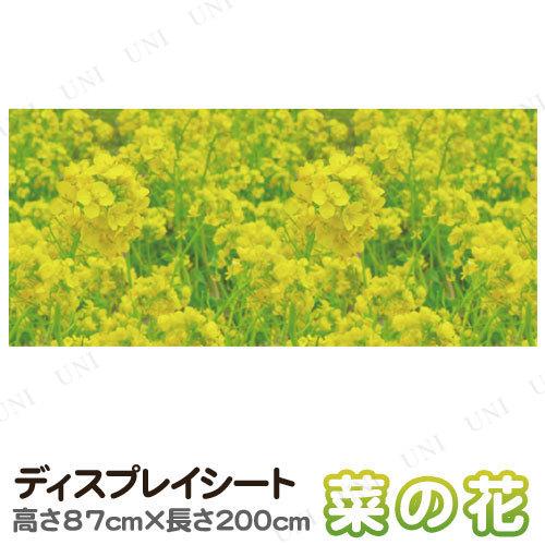 200×87cmディスプレイシート 菜の花