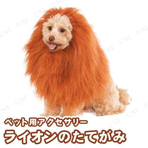 ペットウィッグ ライオンのたてがみ
