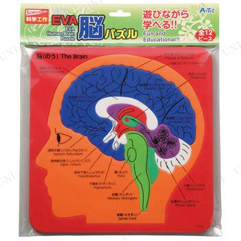 【取寄品】 EVA脳パズル