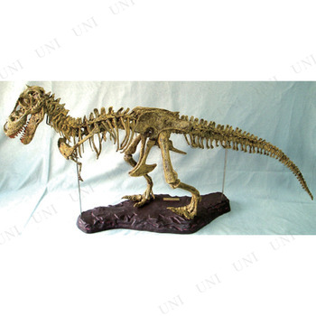 本店パーティワールドt Rexスケルトンパズル ティラノサウルス