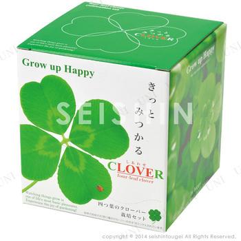 【取寄品】 きっとみつかる四つ葉のクローバー栽培セット