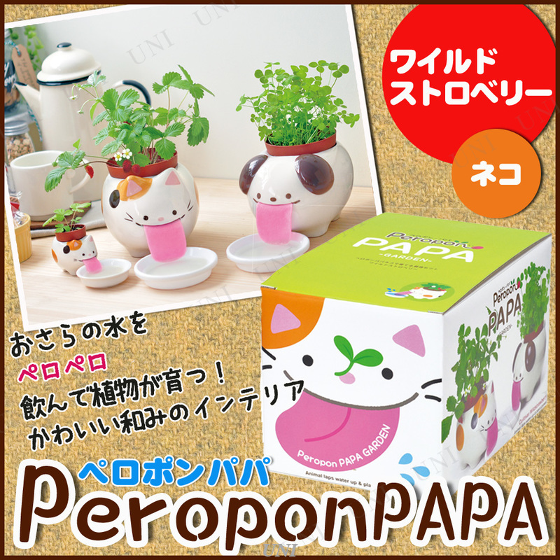 栽培キット ペロポンパパ ネコ ワイルドストロベリー