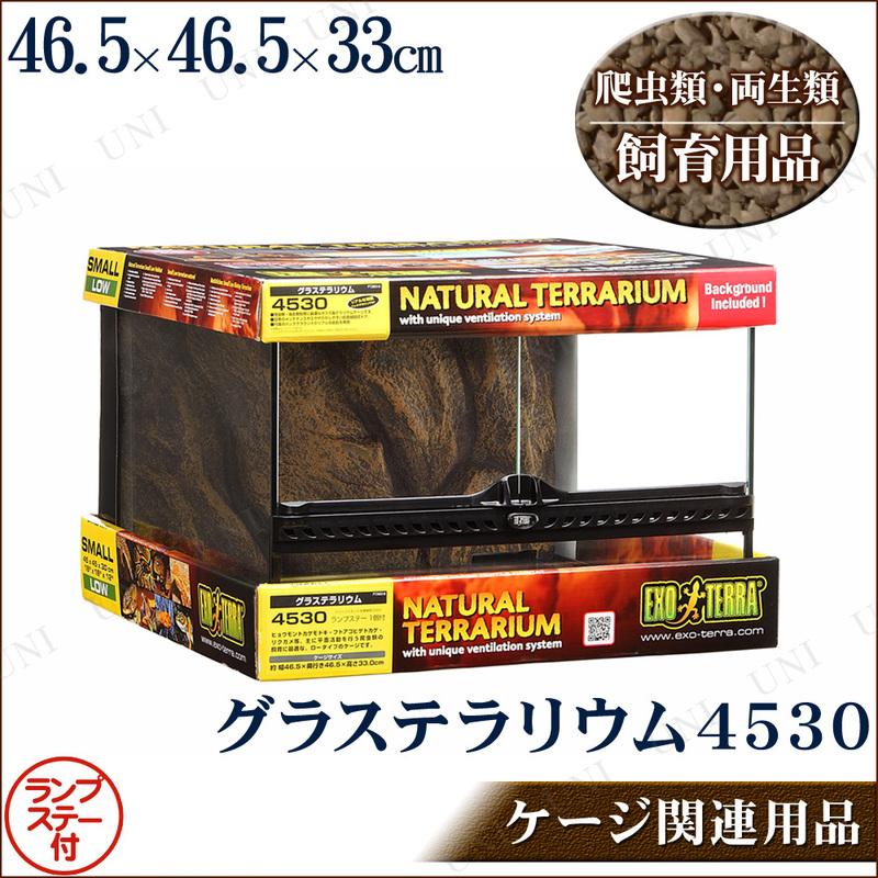 【取寄品】 爬虫類・両生類用ケージ グラステラリウム 4530