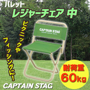CAPTAIN STAG(キャプテンスタッグ) パレット レジャーチェア 中 (ライトグリーン)